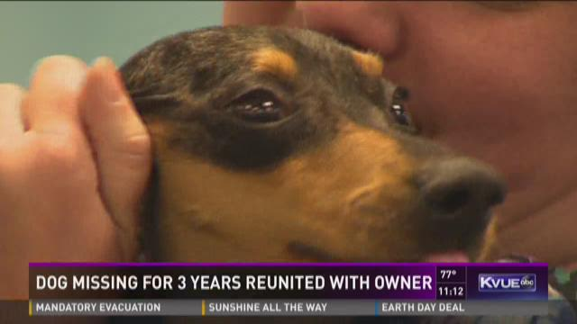 Dog missing for 3 years reunited with owner