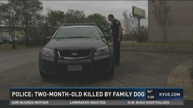 Infant girl killed by family dog, police say