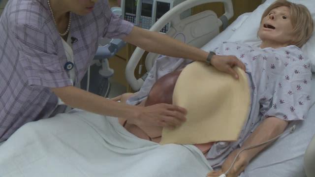 Seton creates mannequins to test intrauterine surgery